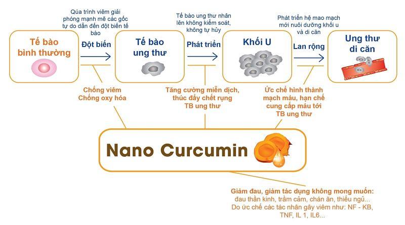 Tác dụng chống ung thư Tinh bột nghệ Curcumin Nano – Curna